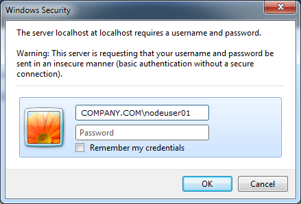 The Windows login dialog box shows the user name for the administrator user specified when you enabled Kerberos authentication.