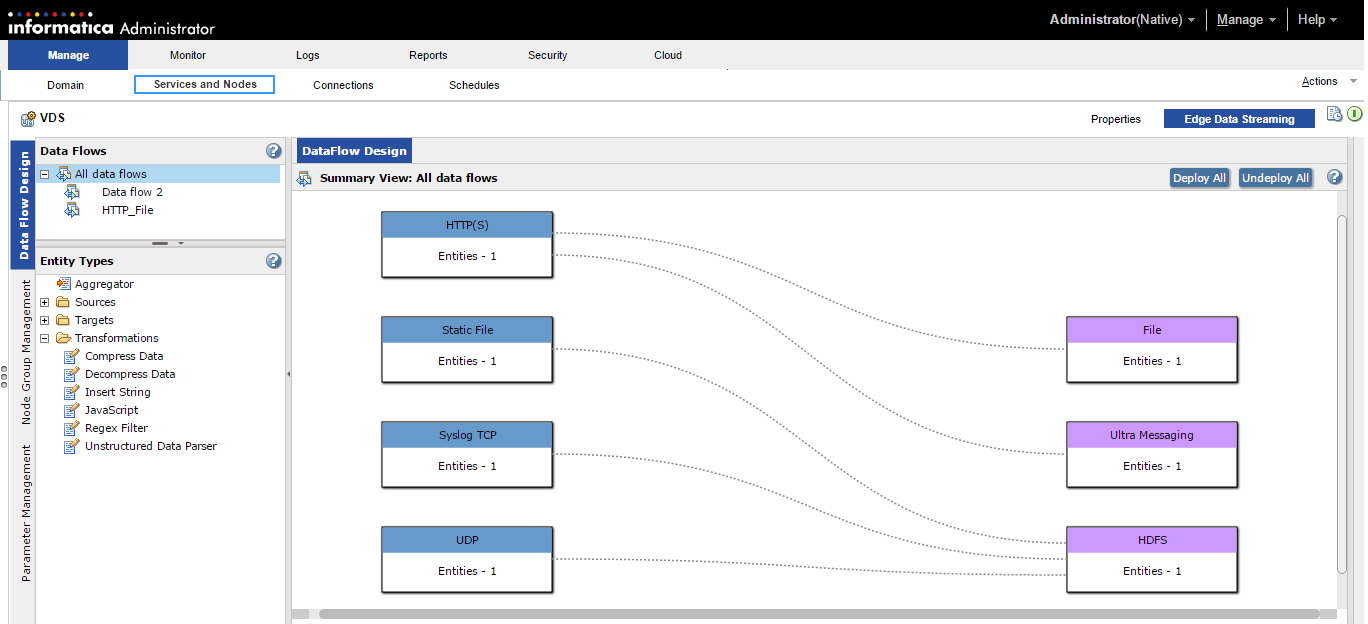 The Edge Data Streaming tab consists of the Data Flow Design tab, Node Management tab, and the Parameter Management tab. The Data Flow Design tab displays the Dataflows panel, the Entity types panel, and the Summary View All Data Flows panel.