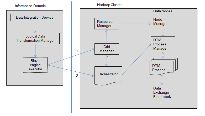 The image shows the Informatica domain on the left-hand side. The Informatica doman contains the following components: Data Integration Service, Logical Data Transformation Manager, Blaze engine executor. The Hadoop cluster contains the following components: Resource Manager, Grid Manager, Orchestrator, Node Manager, DTM Process Manager, DTM Process, Data Exchange Framework.